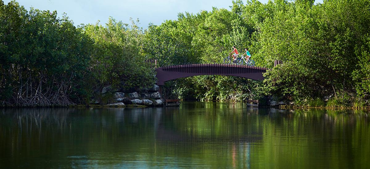 banyan tree mayakoba bridge