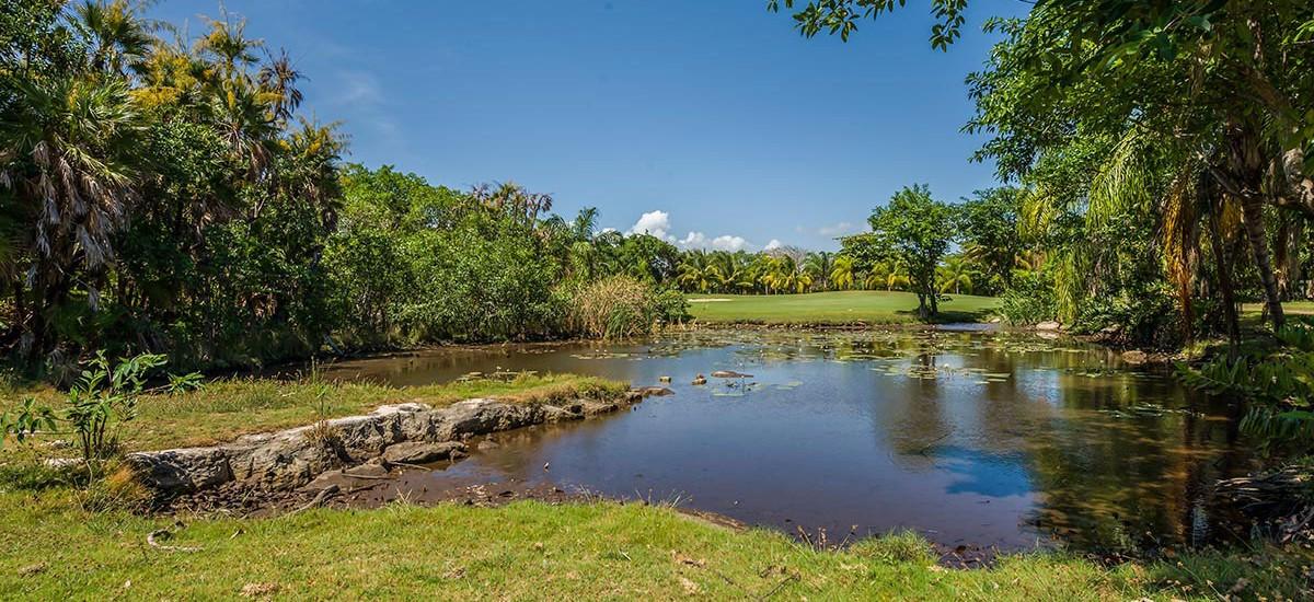 casa jaguar riviera maya 34
