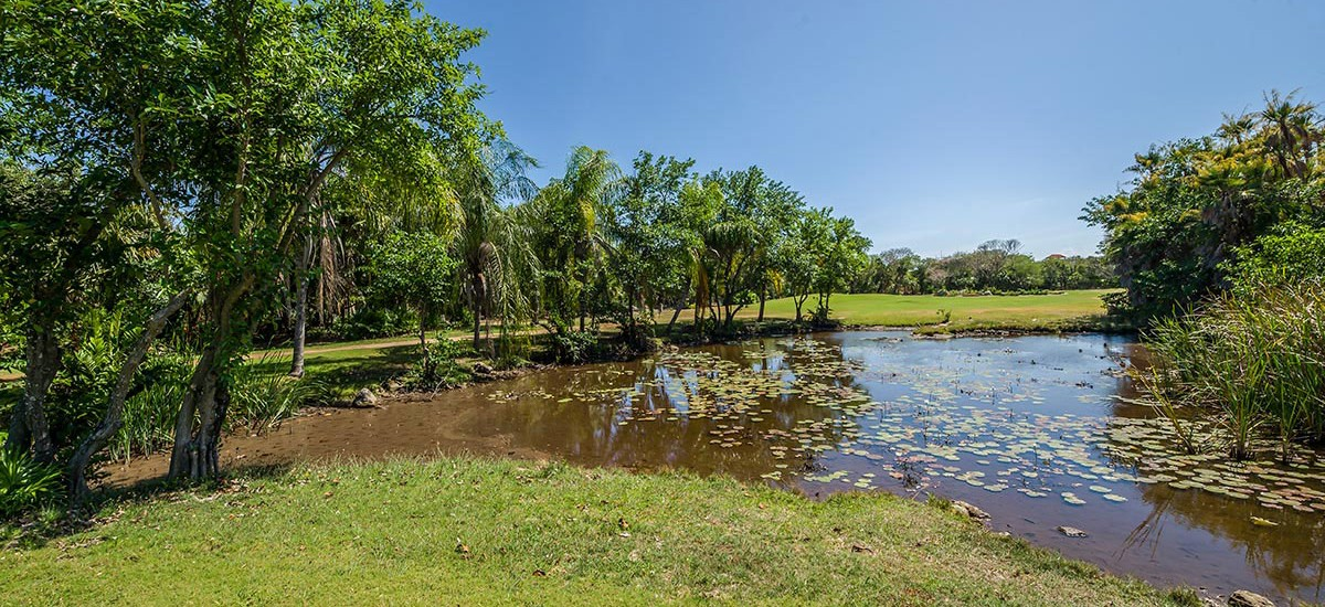casa jaguar riviera maya 35