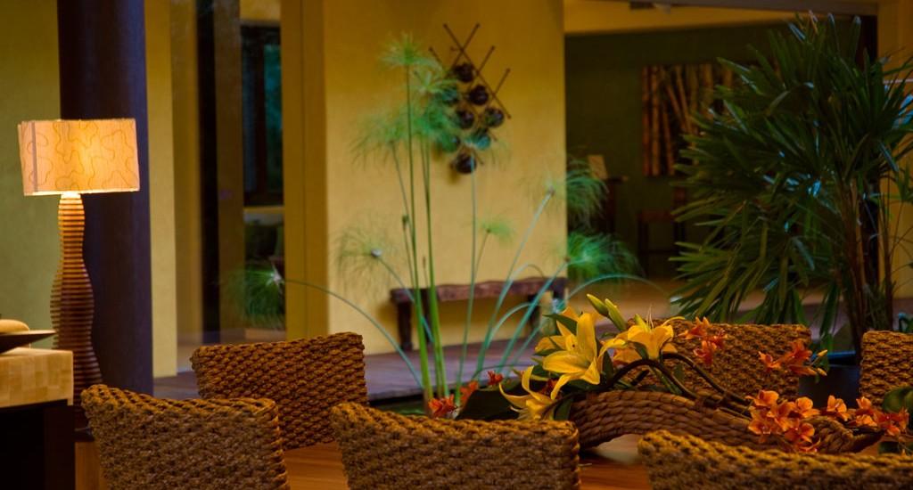 estate cocodrilo lounge