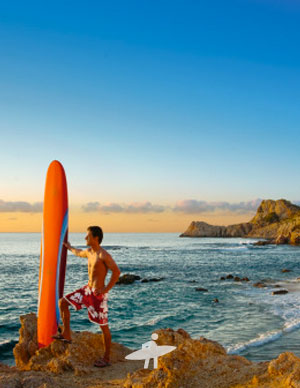 surf-properties