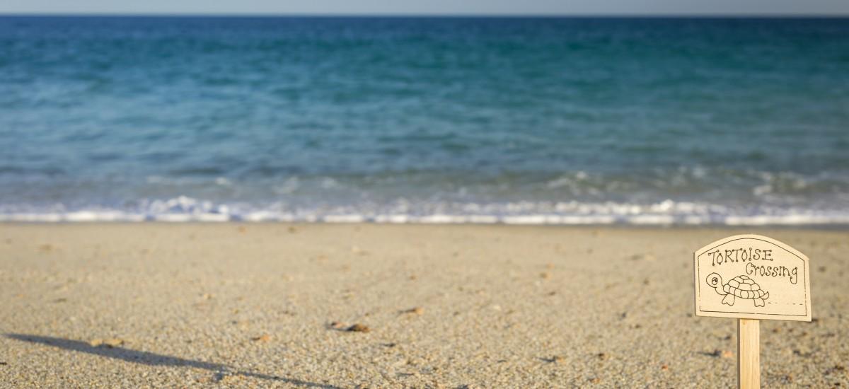 villa 314 beach