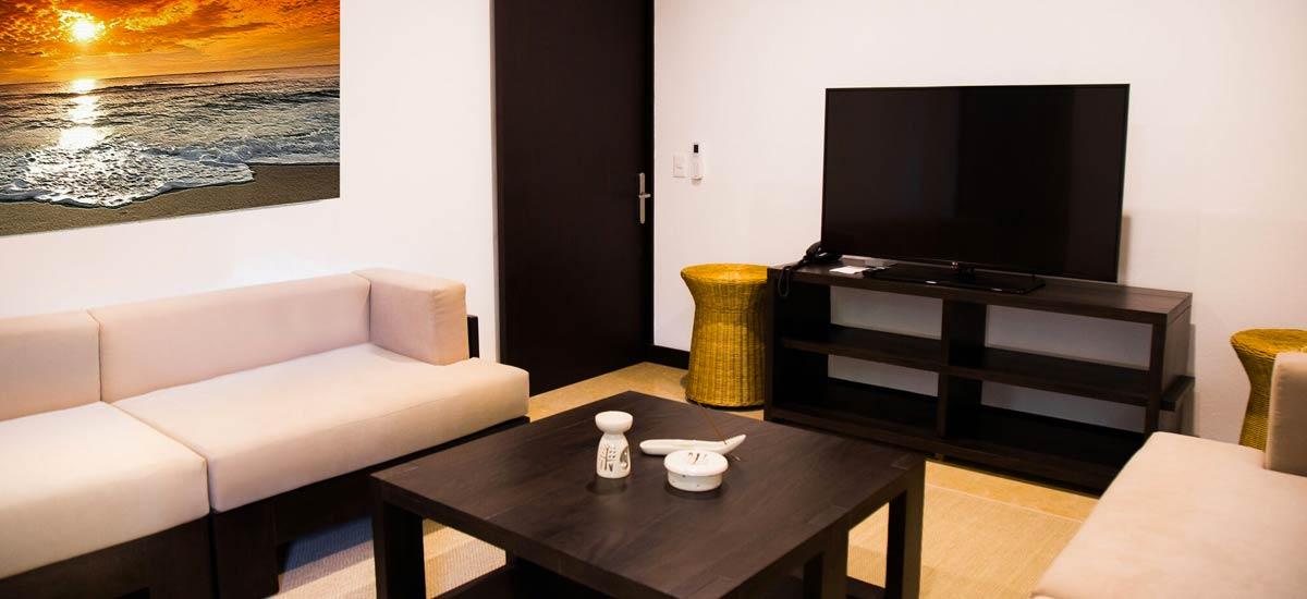 villa ciruelo tv room