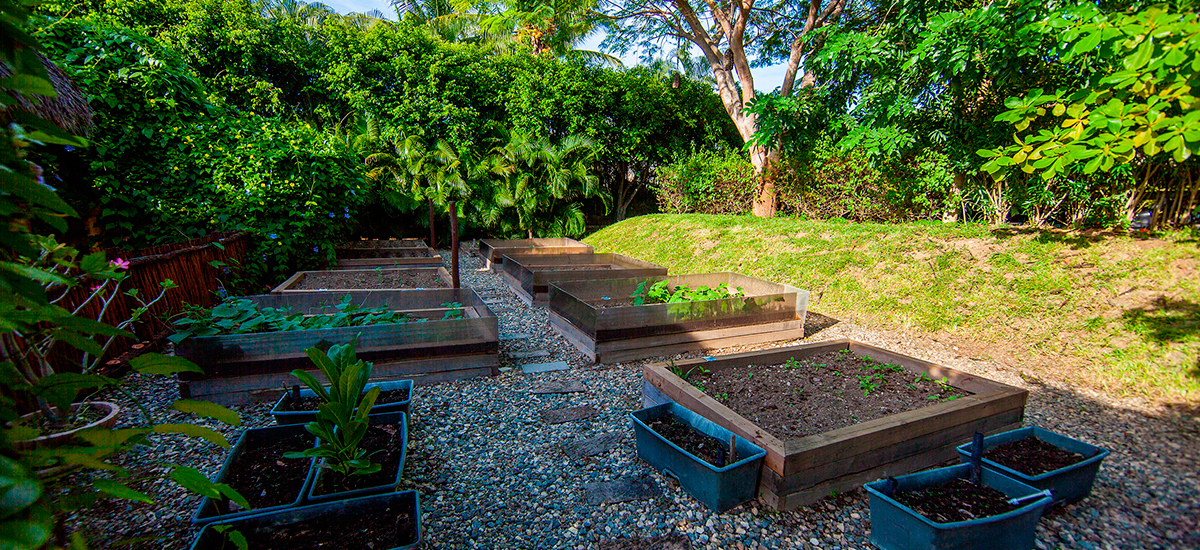 villa lunada organic garden